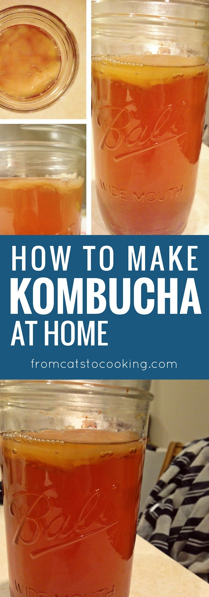 How to Make Kombucha - a tasty probiotic-rich drink that will totally kick your soda habit out the window. It's so good! Click through to learn how to make some for yourself or save this pin for later.