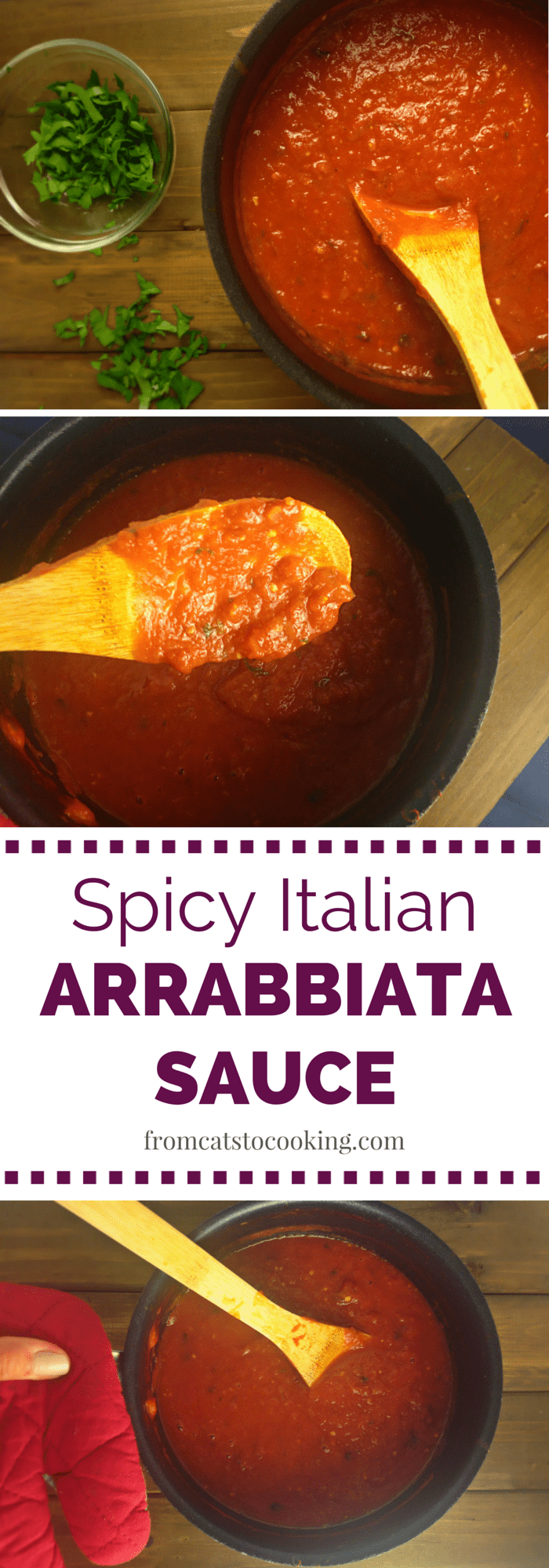 This Homemade Spicy Italian Arrabbiata Sauce recipe is super easy to make and extremely delicious. It's also gluten-free and free of any fillers and junk ingredients.