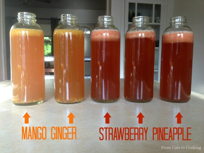 How To Flavor Homemade Kombucha With Fruit From Cats To