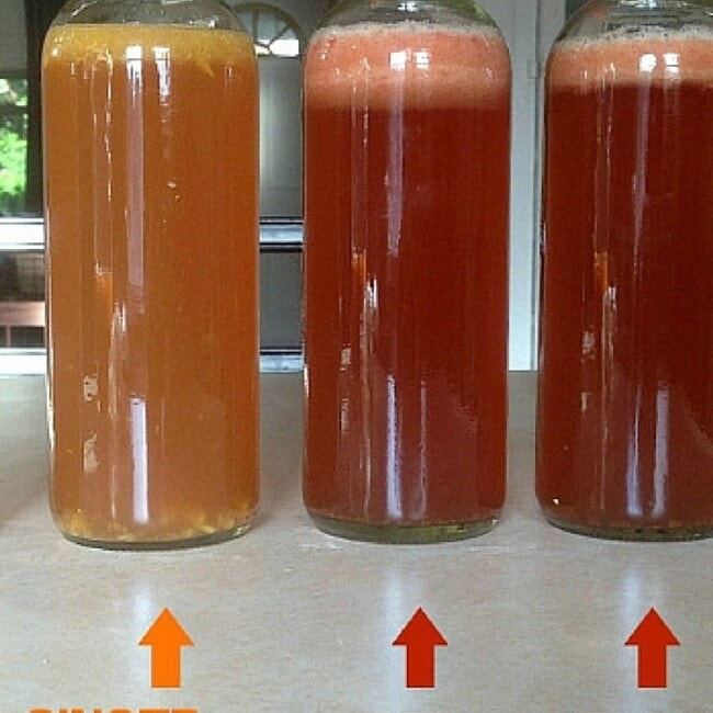 How to Flavor Homemade Kombucha with Fruit