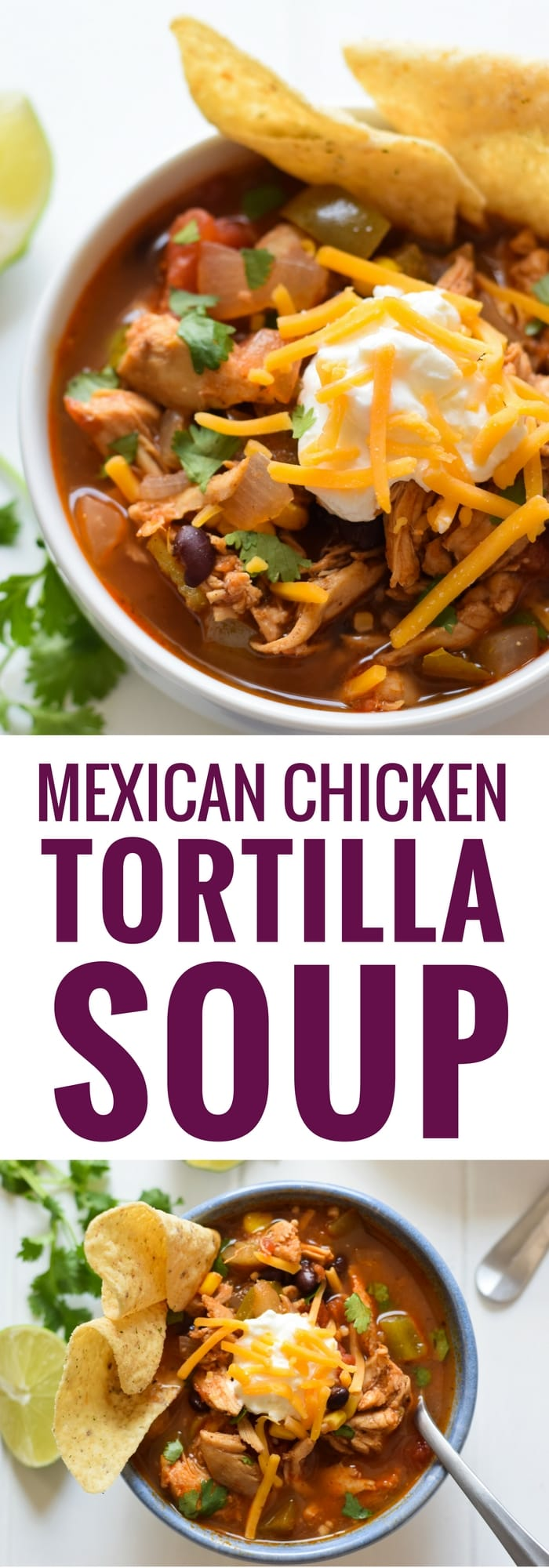 This Mexican Chicken Tortilla Soup has the perfect amount of spice ...
