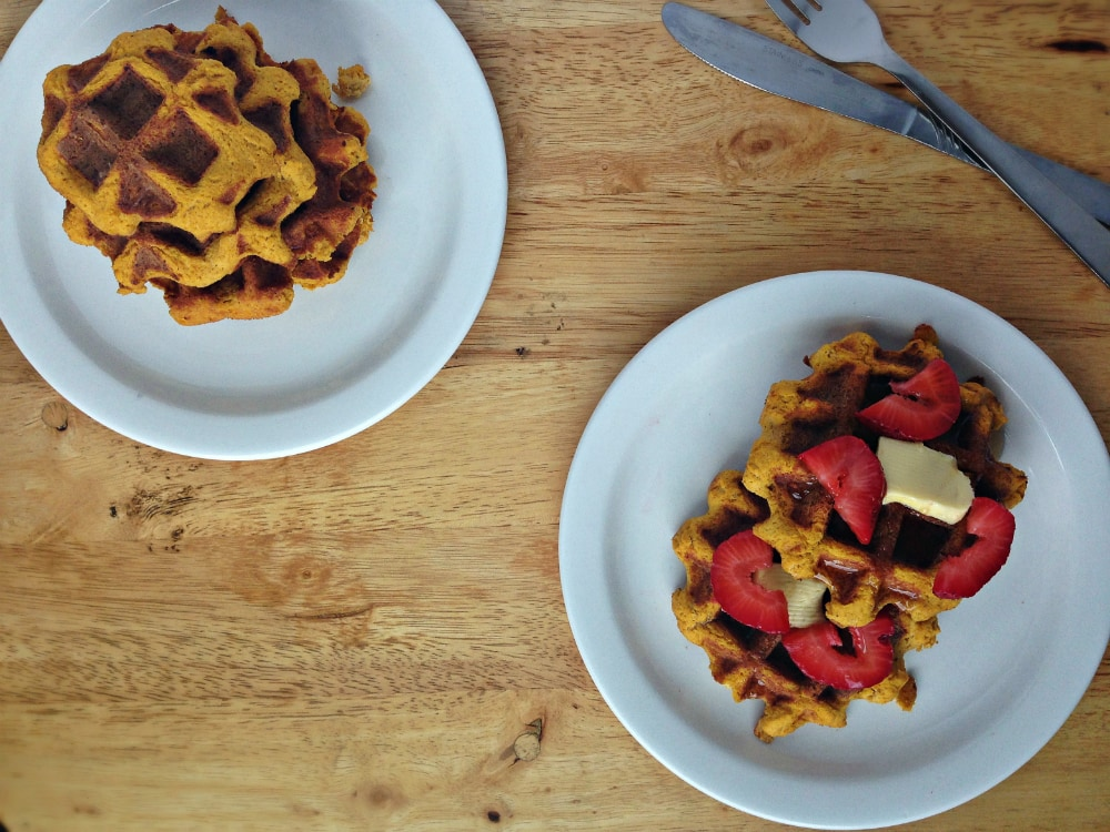 Gluten-free Pumpkin Waffles Recipe. Great for breakfast and brunch! Dairy-free, Gluten-free, Paleo | fromcatstocooking.com