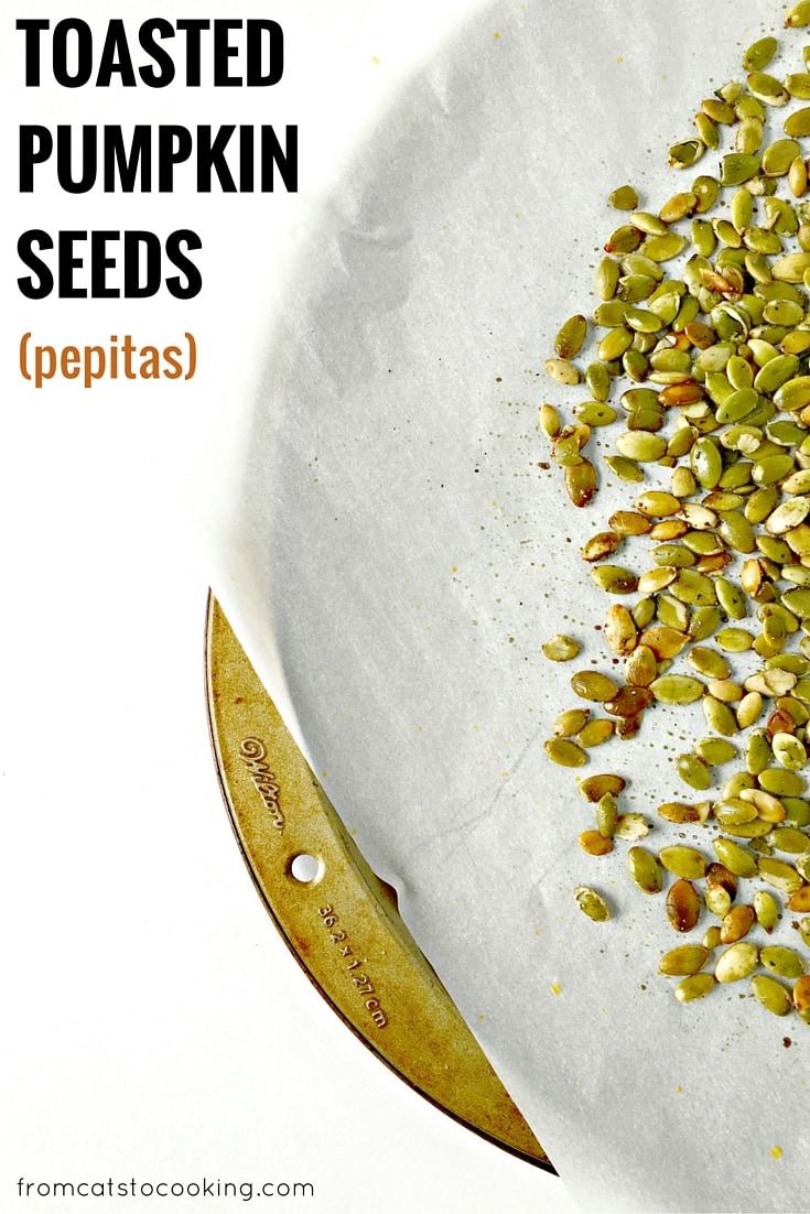 Toasted Pumpkin Seeds Recipe — Dishmaps