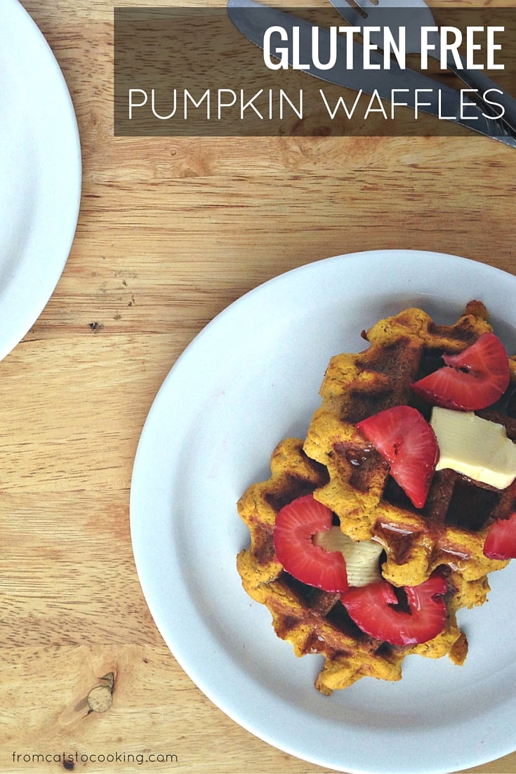 Gluten-free Pumpkin Waffles Recipe. Great for breakfast and brunch! Paleo, Vegetarian, Real Food!