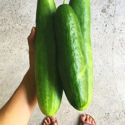 Cucumbers // Tuesday Things