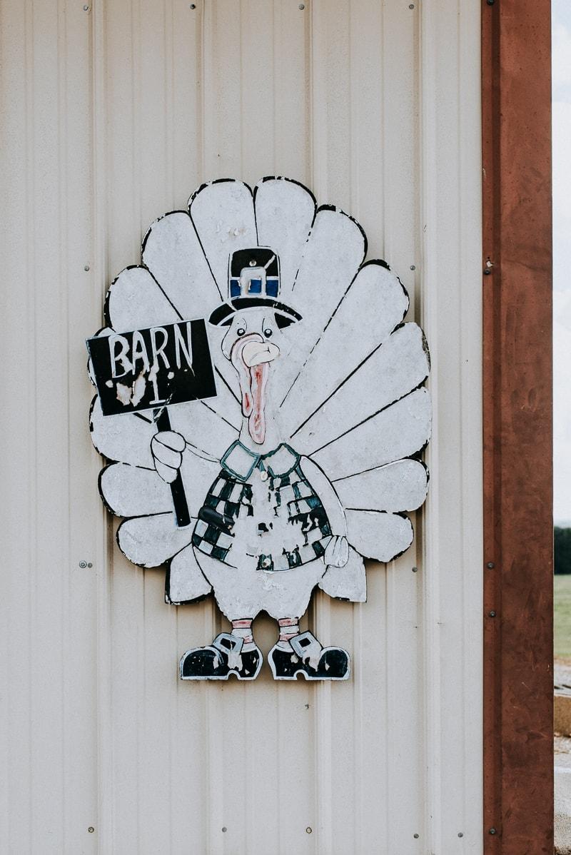 Honeysuckle White and Shady Brook Farms 2018 Farm Tour - Turkey Barn, Iberia, MO