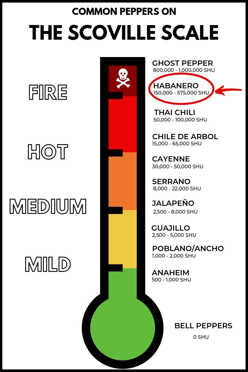 The habanero pepper on the scoville scale.