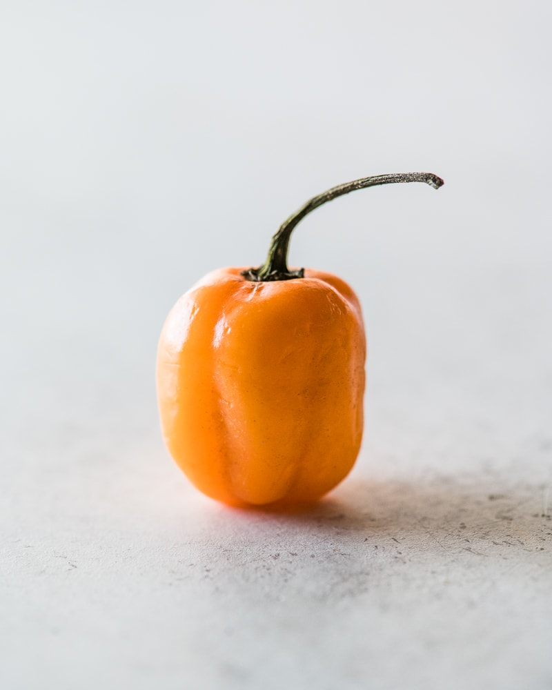 One orange habanero pepper sitting on a table.