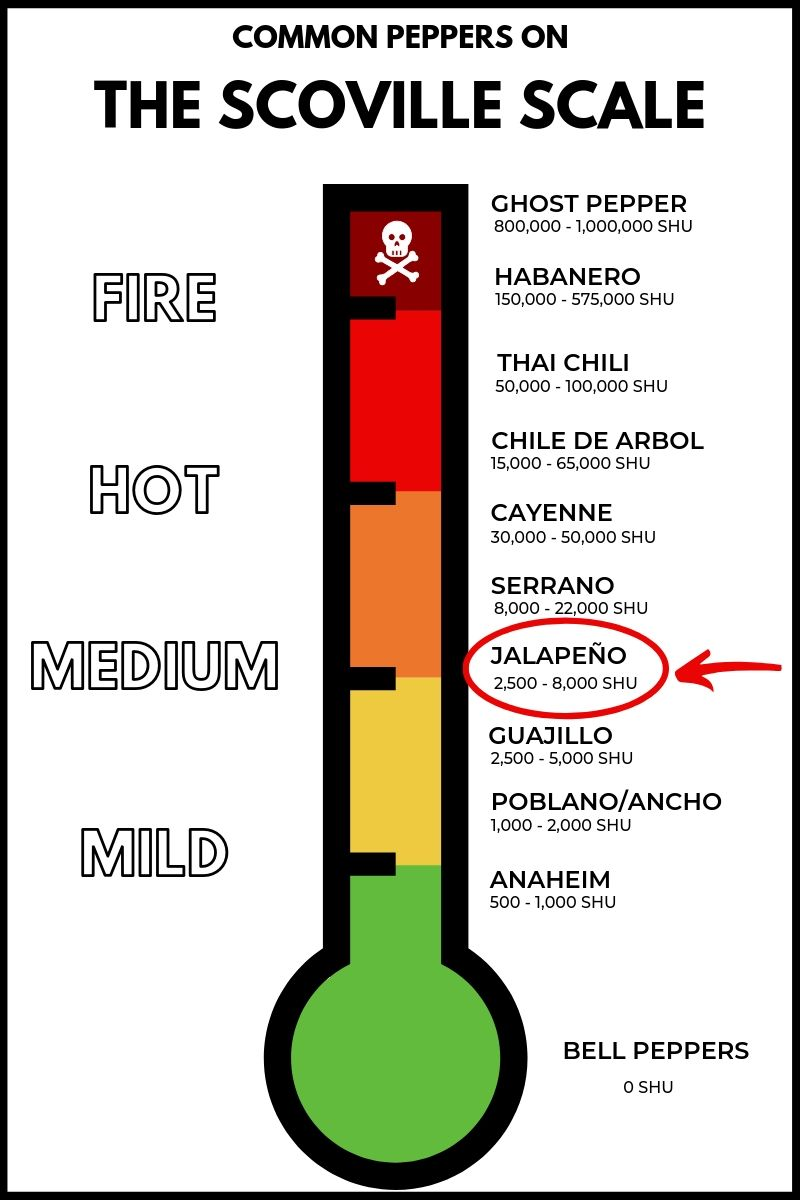 Where the jalapeno pepper falls on the scoville scale