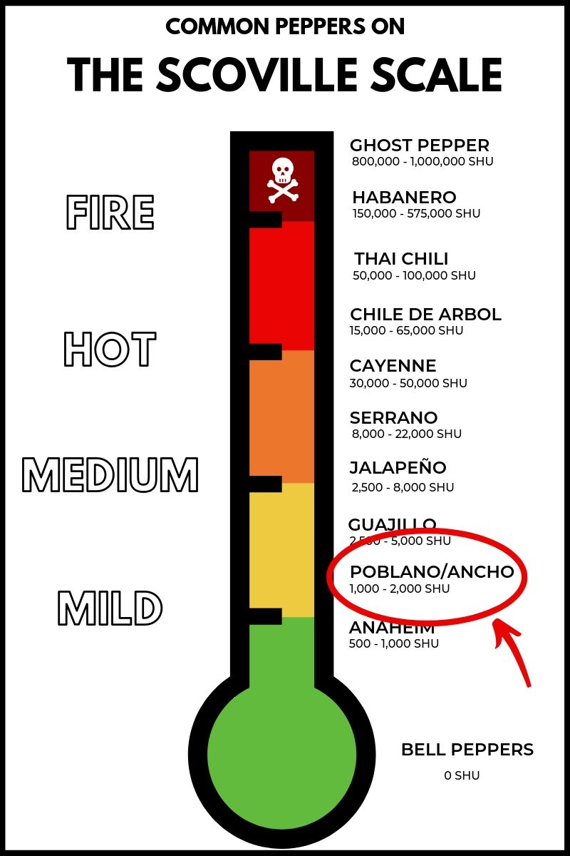Poblano Pepper on the Scoville Scale
