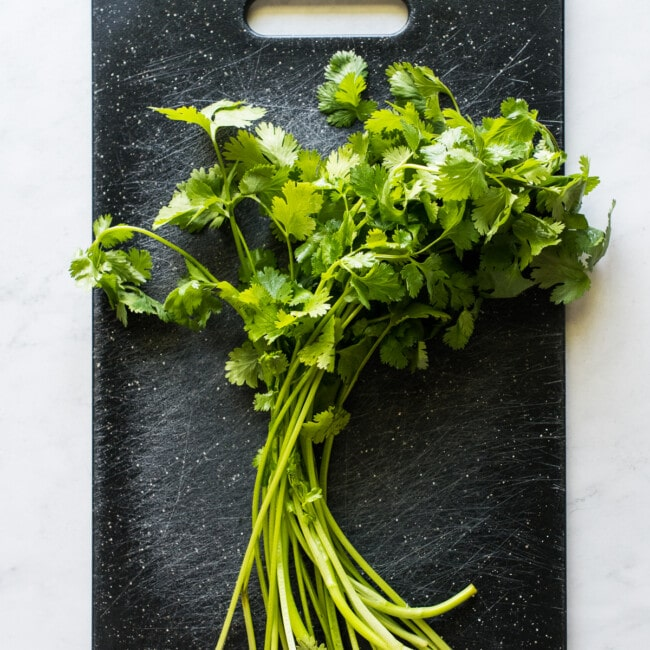 An entire bunch of cilantro on a cutting board.