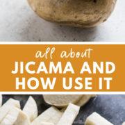 A jicama vegetable on a table.