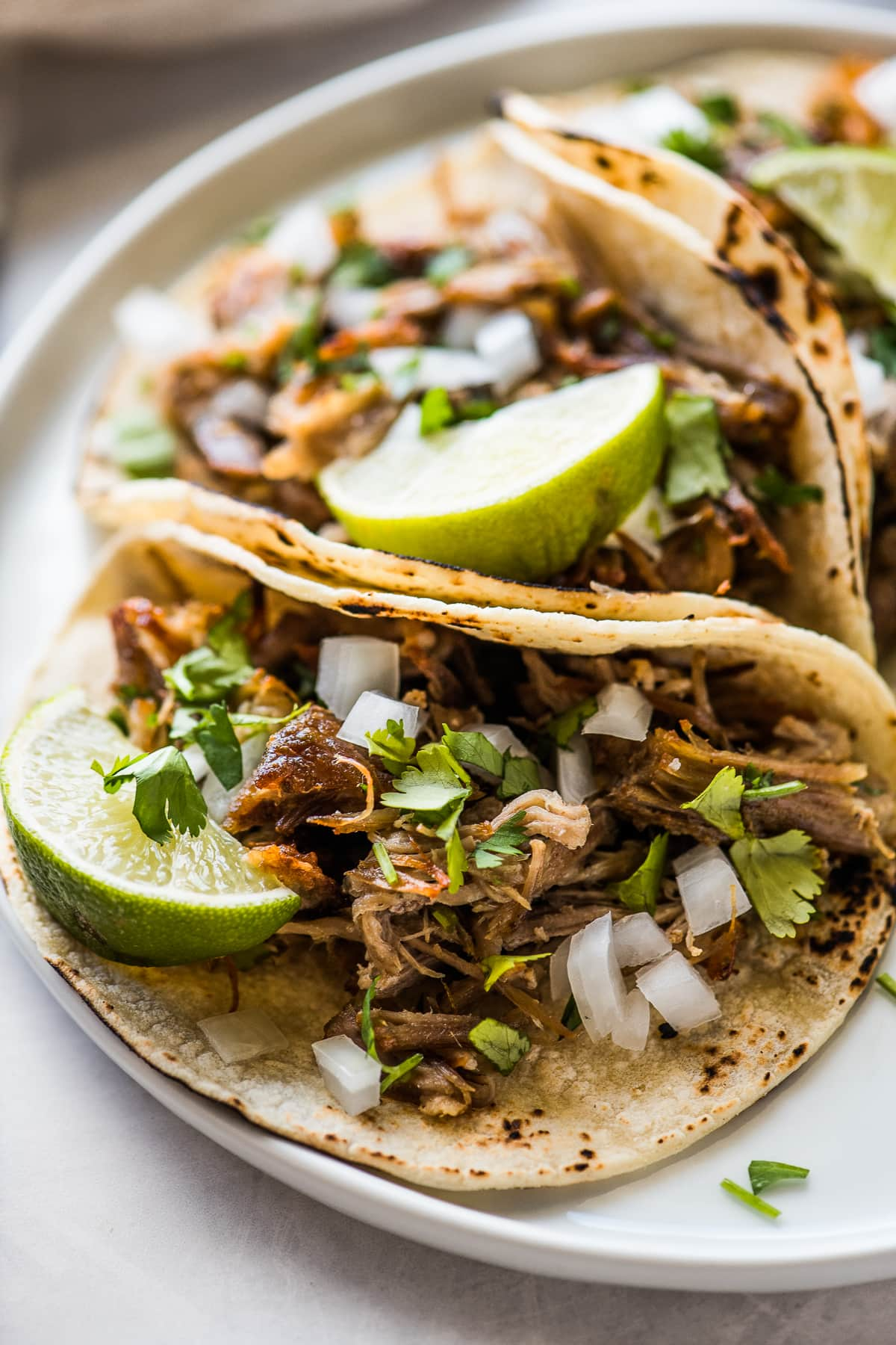 Pressure cooker carnitas tacos topped with cilantro and onions.