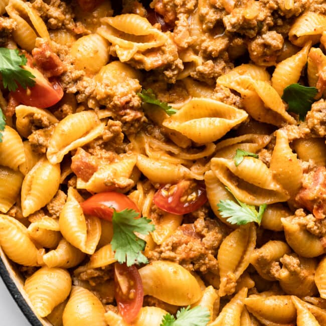 Creamy and cheesy taco pasta ready to eat.