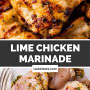 Lime Chicken Marinade