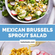 Mexican Brussels Sprout Salad