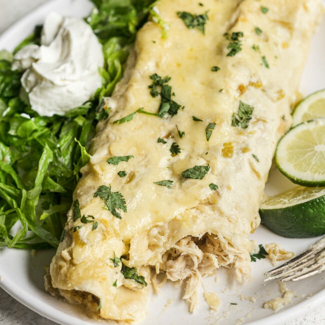 White chicken enchiladas topped with cilantro on a plate.