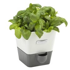 Self-Watering Herb Planter - $20 // Holiday Gift Guide Under $100