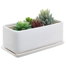 Ceramic Succulent Pot - $23 // Holiday Gift Guide Under $100